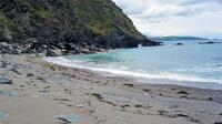 Barrett's Zawn Beach
