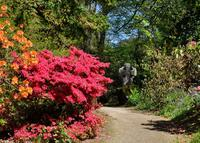Gardens at Pencarrow, near Bodmin in Cornwall