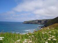View of Penhallic Point from the coast path at Trebarwith Strand