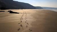 Footprints on Tregardock Beach