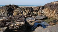 Rockpools on Tregardock Beach
